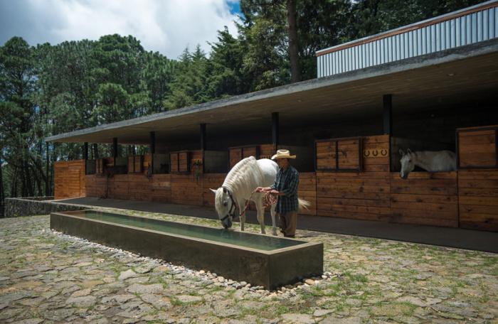 Arquitetura equestre - cocheiras