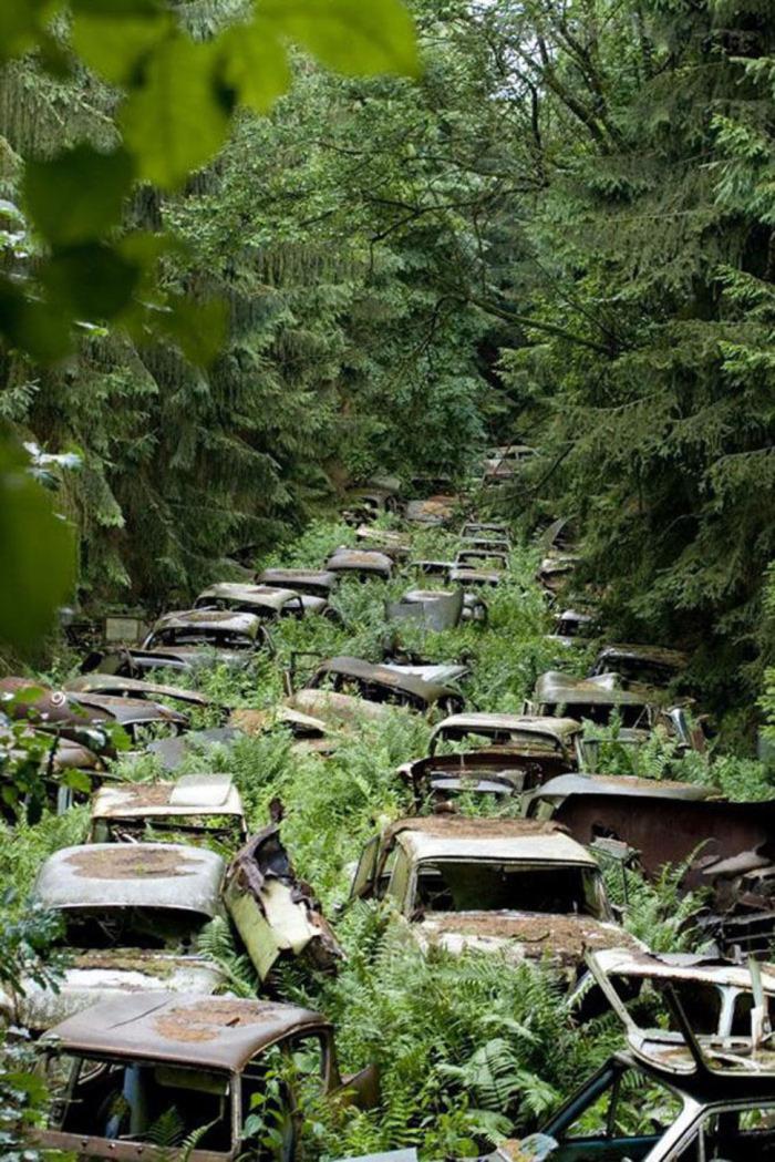 Cemitério de carros