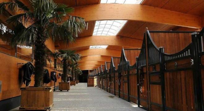 Arquitetura hipica haras cavalos