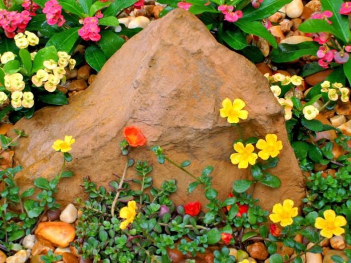 flores na rocha